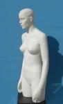 2399 donna torso testa braccia