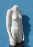 2404 donna torso con braccia