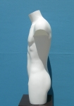 2637 torso precolorato uomo