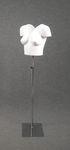 5246 bustino donna taglio v manica corta fotografie cataloghi moda