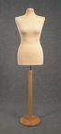 5464 busto sartoriale color ecru base legno circolare chiara