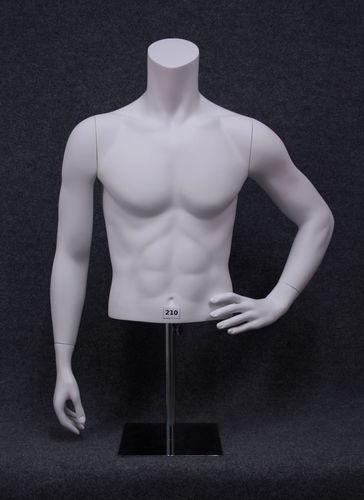 034 BUSTO 210U - Busto da uomo marchio Vision